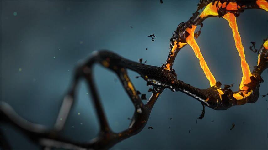 Longevity, Regeneration and Antiaging Techniques