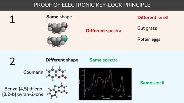 Proof of electronic molecular key principle